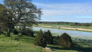 Norrtälje Naturcentrum leder ett av 20 nationellt utpekade pilotområden mot övergödning