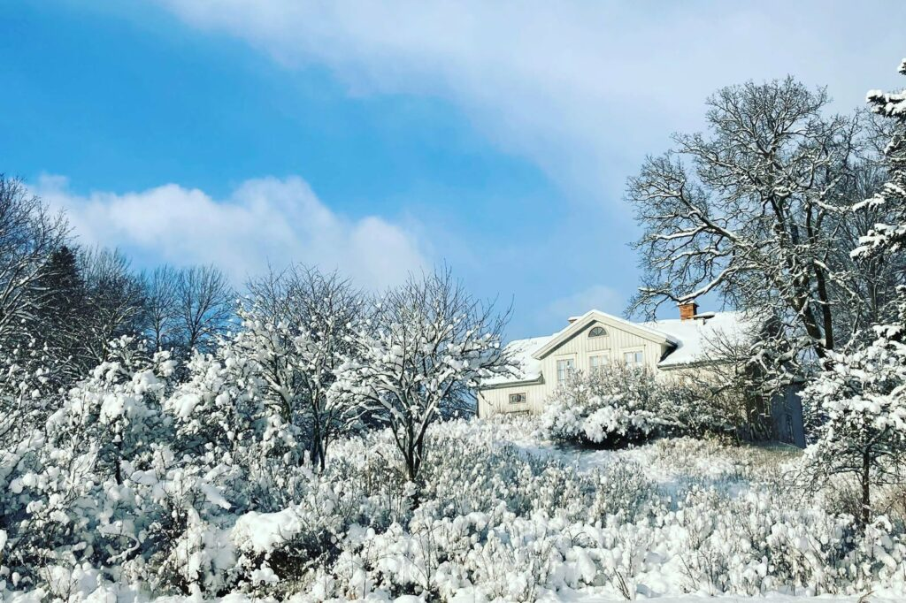färsna gård vinter